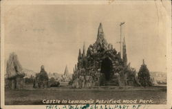 Castle, Lemmon's Petrified Wood Park Postcard