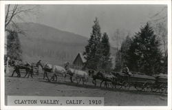 Lumber Wagons Pulled By Horses 1910