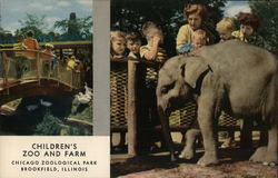Children's Zoo and Farm, Chicago Zoological Park