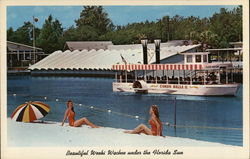 Beautiful Weeki Wachee Under the Florida Sun