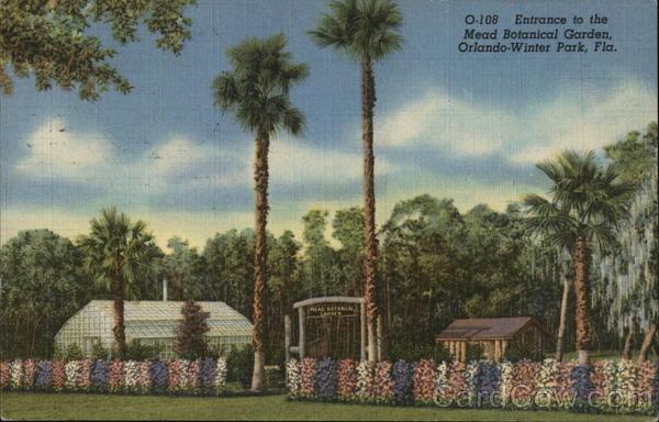 Mead Botanical Garden Winter Park Fl Postcard