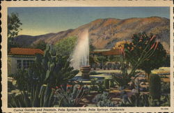 Cactus Garden and Fountain, Palm Springs Hotel