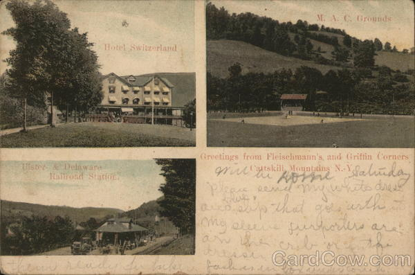 3 Pictures: Hotel Switzerland, M. A. C. Grounds, Ulster & Delaware Railroad Station Griffin New York