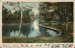 Lake in Elm Park