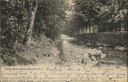 Along Green Brook Postcard