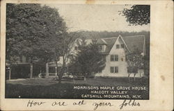 Morrisons Maple Grove House, Catskill Mountains
