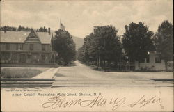 Catskill Mountains: Main Street