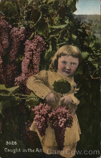 Caught in the Act - Girl Holding Two Bunches of Grapes
