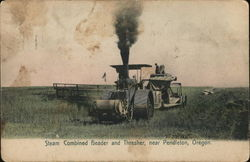 Steam Combined Header and Thresher near Pendleton, Oregon