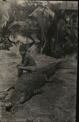 Boy Sitting on Alligator