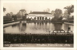 Formal Pool, Zoological Park