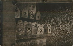 Shelf of Skulls