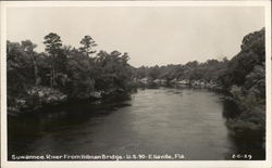 Suwannee River From Hillman Bridge