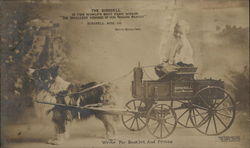The Birdsell Wagon - Dog Cart, Birdsell Mfg. Co.