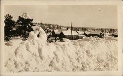 Flagstaff in Winter