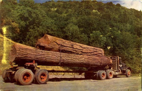 Log Truck Trucks Logging