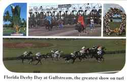 Gulfstream Home Of The Florida Derby