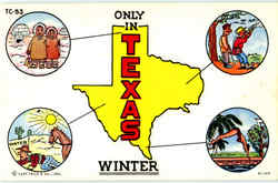 Only In Texas Winter