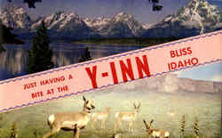 Just Having A Bite At The Y-Inn Postcard