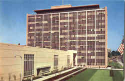 City County Building Postcard