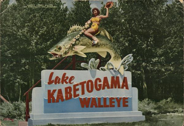 Lake Kabetogama Walleye Minnesota