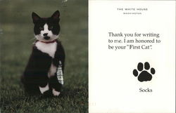 Socks, the White House Cat