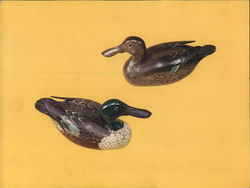 Decoys and Decoy Carvers of Illinois