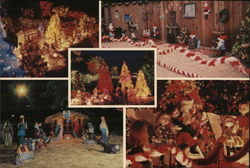 National Enquirer Christmas Display Large Format Postcard
