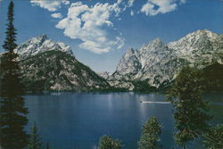 Jenny Lake Large Format Postcard