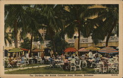 Tea Gardens, The British Colonial Hotel