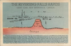 Cross Section of The Reversing Falls Rapids