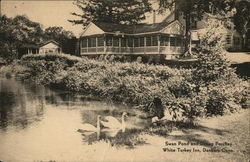 Swan Pond and Dining Porches, White Turkey Inn