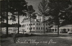 Scandia Village in the Pines