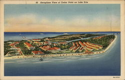 Aeroplane View of Dedar Point on Lake Erie Postcard
