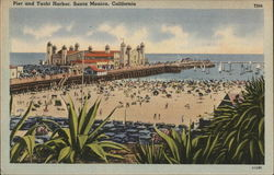 Pier and Yacht Harbor Postcard
