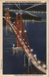 Night View, Golden Gate Bridge