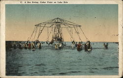 A Sea Swing, Cedar Point on Lake Erie Postcard