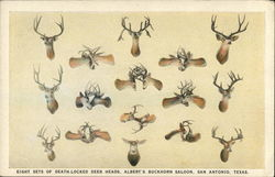 Eight Sets of Death-Locked Deer Heads, Albert's Buckhorn Saloon
