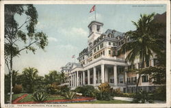 The Royal Poinciana