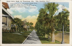 "Beach Drive Walk, St. Petersburg, Fla. ""The Sunshine City"" Postcard"