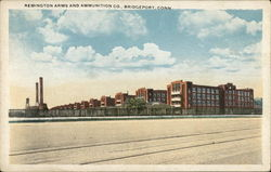 Remington Arms and Ammunition Company