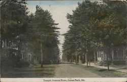 Temple Avenue Pines