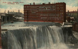 First Falls, Genesee River