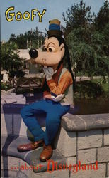 Goofy . . . about Disneyland