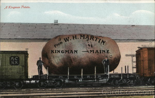 A Kingman Potato Maine Exaggeration