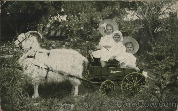 Goat Pulling Studebaker Wagon w/Girls Advertising Postcard