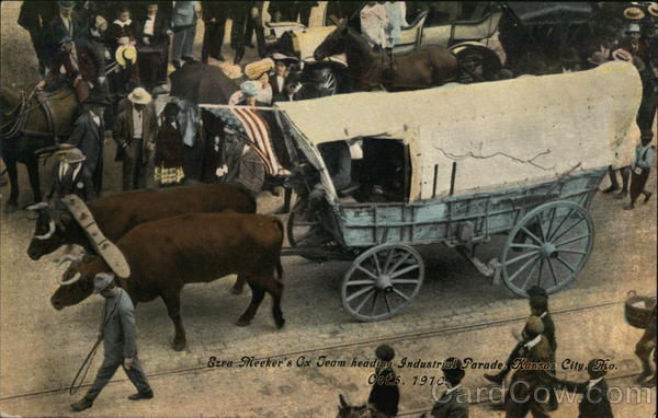 Sire Meeker's Ox-Drawn Tram Heads Industrial Parade, Kansas City, Oct. 5, 1910