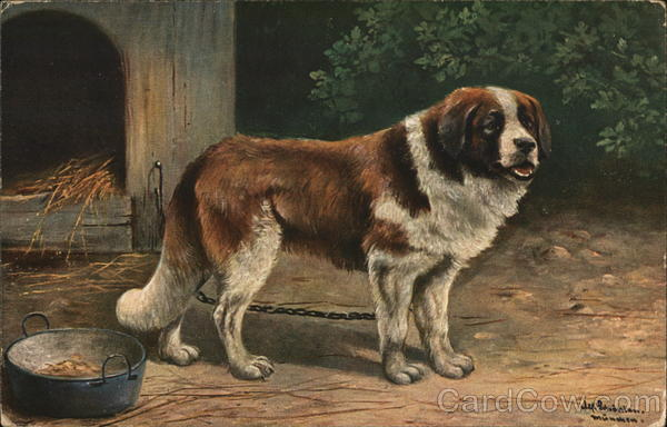 Brown and White Dog Dogs