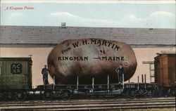 A Kingman Potato