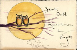 Two Owls on Branch with Moon Postcard